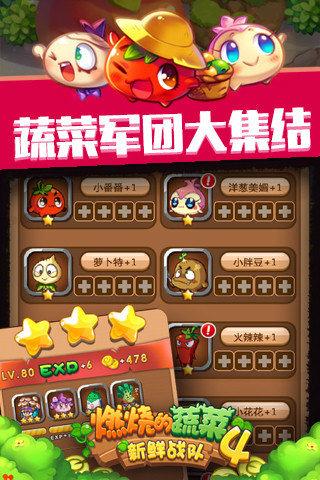 燃烧的蔬菜4新鲜战队截图(3)