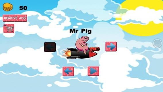 愤怒的飞行猪仔截图(2)