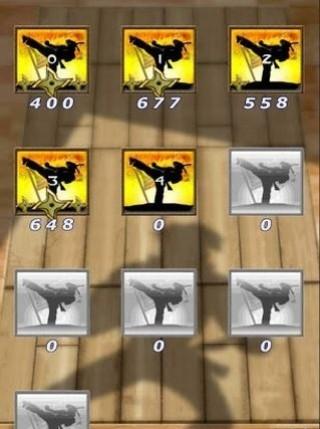 忍者空手道防御截图(3)