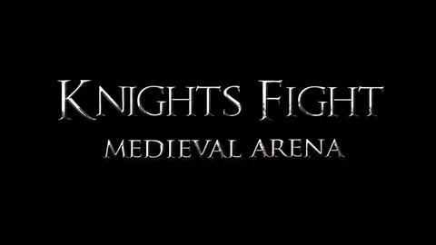 骑士对决中世纪竞技场截图(1)