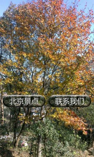 北京旅游景点大全截图(1)