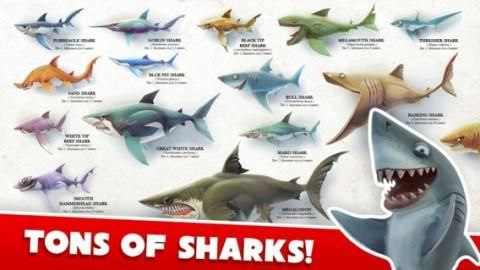 饥饿鲨世界3d破解版1.8.2截图(1)