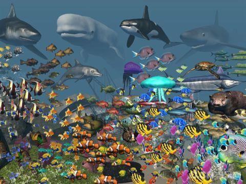 VR Ocean Aquarium 3D截图(1)