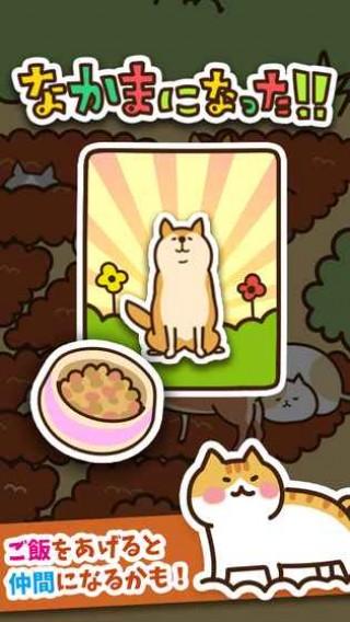 猫咪田园iOS版截图(5)