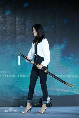 绣春刀2修罗战场首映礼免费在线观看地址截图(1)