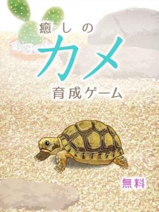 治愈的龟养成中文版截图(4)