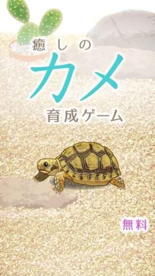 治愈的龟养成中文版截图(1)