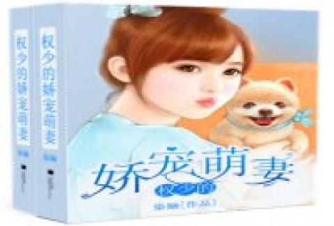 权少的挚爱娇宠燕涵截图(1)