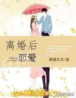离婚后恋爱全本截图(1)