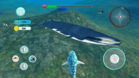 鲨鱼攻击进化3D游戏IOS版截图(4)