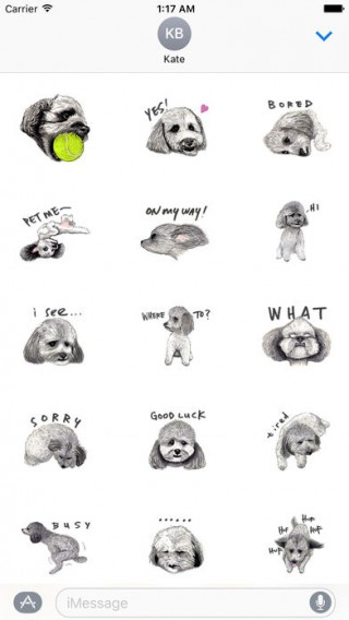 Toy Poodle Dog Emoij Sticker截图(1)