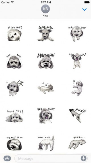 Toy Poodle Dog Emoij Sticker截图(2)