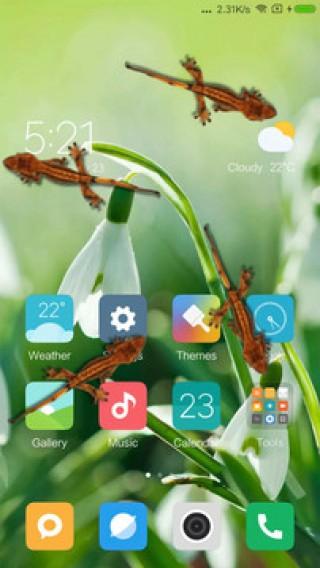 蜥蜴在手机恶作剧安卓版截图(4)