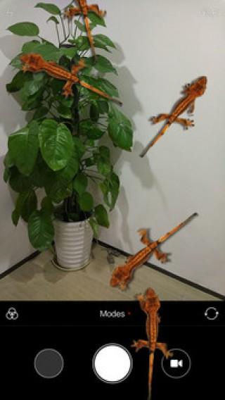 蜥蜴在手机恶作剧安卓版截图(3)