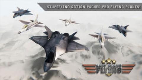最后的飞机飞行截图(2)