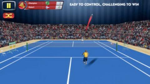 真正的羽毛球超级联赛截图(3)