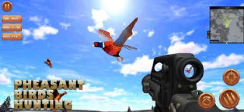 雉鸟狩猎截图(2)