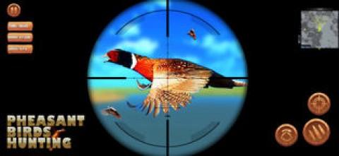 雉鸟狩猎截图(4)