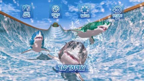 Shark Slide Racing 2018截图(3)