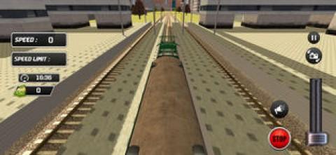 Indian City Train Drive 3D截图(1)