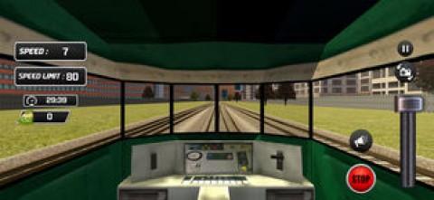 Indian City Train Drive 3D截图(2)