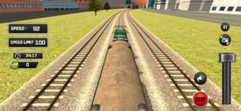 Indian City Train Drive 3D截图(3)