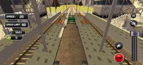 Indian City Train Drive 3D截图(4)