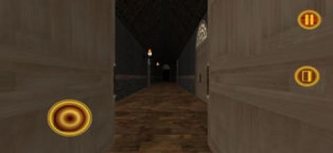吸血鬼之夜冒险3D截图(4)