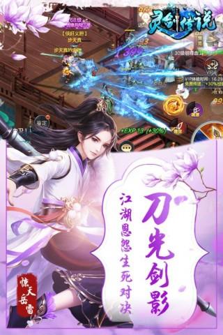 灵剑传说破解版截图(3)