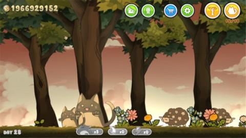 森林里的猫截图(2)