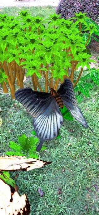 蝴蝶经理截图(5)