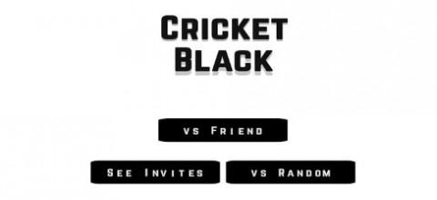 小黑人板球截图(2)