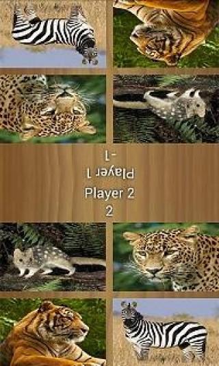 双人游戏—动物截图(2)