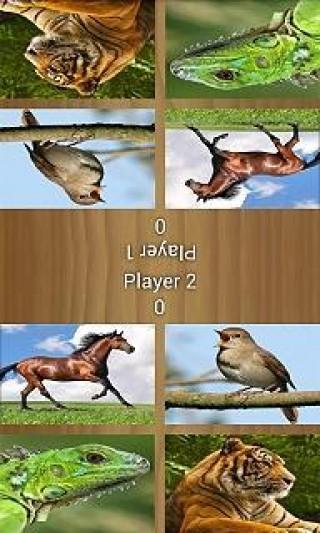 双人游戏—动物截图(1)