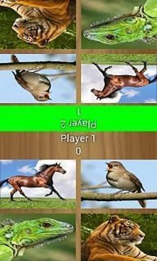 双人游戏—动物截图(4)