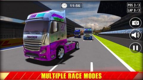 迷你卡车司机货运模拟器截图(2)