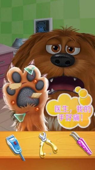 宠物小狗爱心医院截图(3)