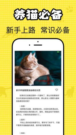 猫咪翻译官截图(2)