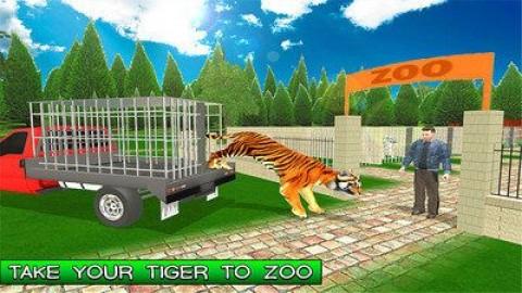 家庭宠物老虎截图(2)
