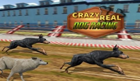 真正的狗比賽截圖(3)