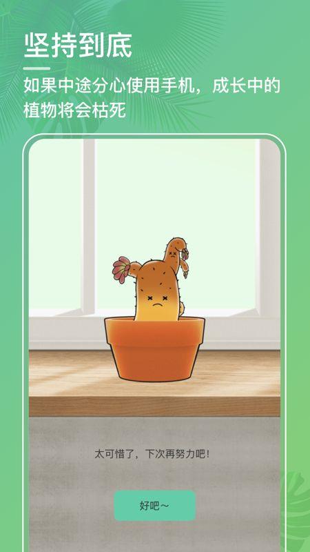 口袋植物截图(4)