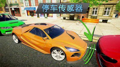 司機模擬器截圖(1)