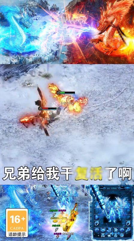 游侠传奇截图(1)