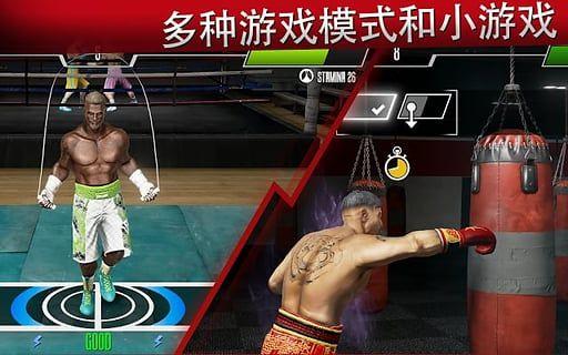 真实拳击2洛奇截图(2)