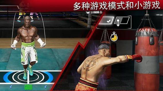 真实拳击2洛奇截图(4)