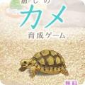 治愈的龟养成