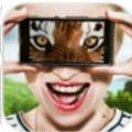 动物眼睛模拟器