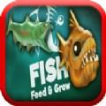 鱼的成长游戏中文汉化版