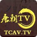 唐朝TV手机版