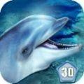 海洋海豚模擬器